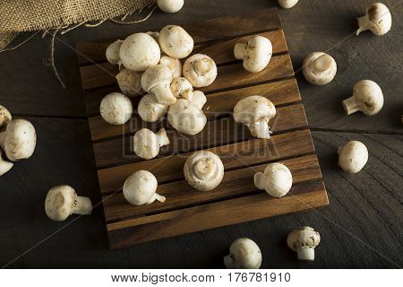 Raw Organic Baby Button Mushrooms