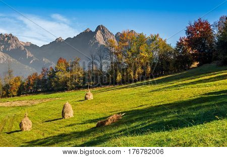 Composite High Tatra mountains rural area in autumn season. agricultural field with haystack on a hill near the forest with red foliage. beautiful and vivid landscape.