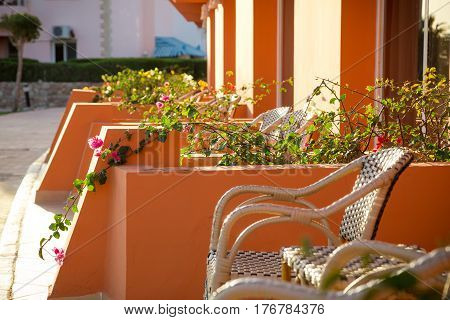 wicker chairs and flowers on hotel's terrace in sunlight, outdoor vacation concept