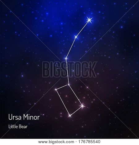 Ursa minor Little Bear constellation in the night starry sky. Vector illustration