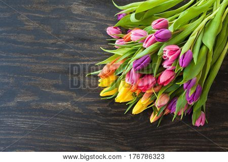 Fresh tulips in bright colors on dark wooden background
