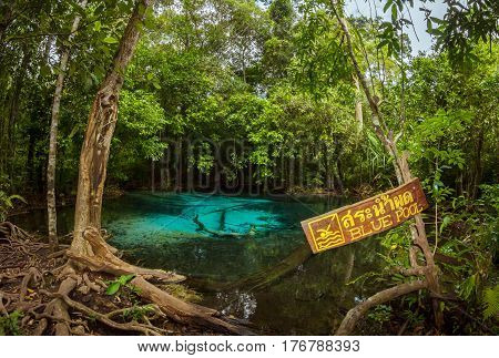Emerald Blue Pool, Krabi province of Thailand