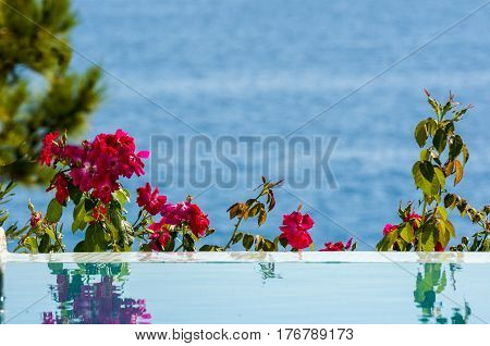 tranquil view of the sea from water poolside