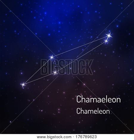 Chameleon constellation in the night starry sky. Vector illustration