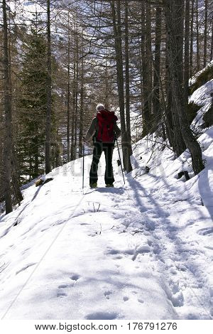 snowshoe hike on the mountain path in winter