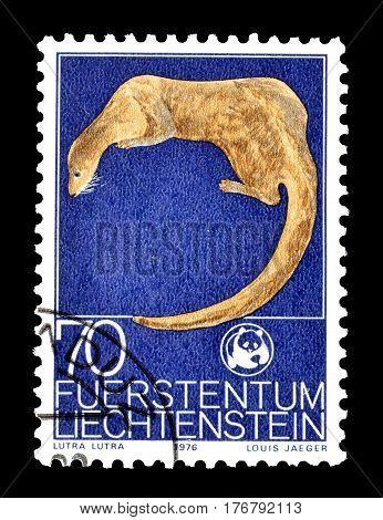 LIECHTENSTEIN - CIRCA 1976 : Cancelled postage stamp printed by Liechtenstein, that shows Eurasian Otter.