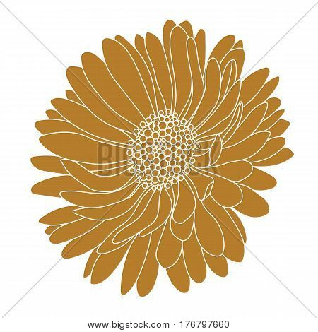 Graphical golden flower illustration. golden flower, contour flower, bloom flower, decorative flower, isolate flower, blossom flower, monochrome flower. Vector.