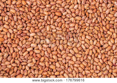 Raw pinto bean background. Vegan source of protein.