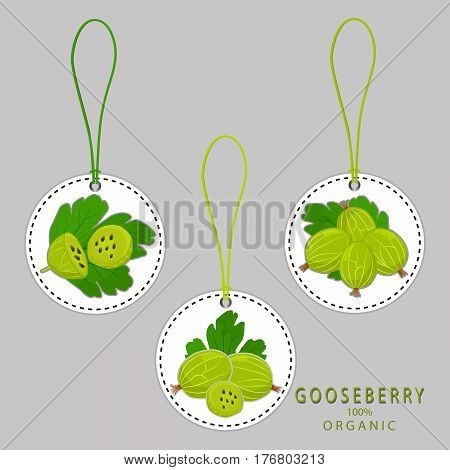 Vector illustration logo for whole ripe fruit gooseberry with green stem leaf,cut half,background.Gooseberry drawing consisting of tag label,natural sweet food.Eat fresh organic fruits gooseberries.