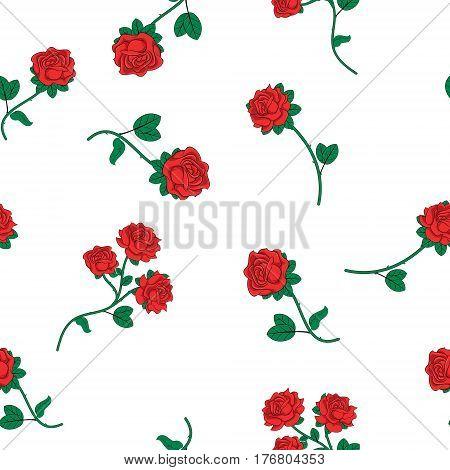 Seamless wallpaper wild roses on white background. Vector illustration