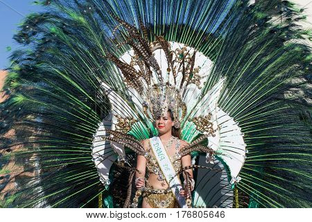 Woman In Costumes On Carnival