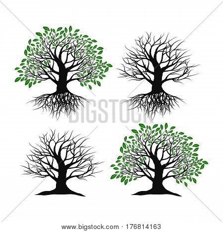 Set of trees on a white background. Trees with roots and without roots.