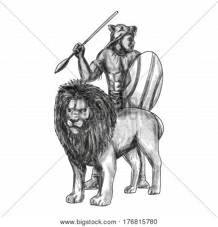 Tattoo style illustration of an african warrior holding spear and shield looking to the side with lion in front of him facing front set on isolated white background.