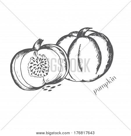 Pumpkin in a cut with seeds is painted by hand