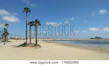Beach of Torrevieja. Costa Blanca Province of Alicante. Spain