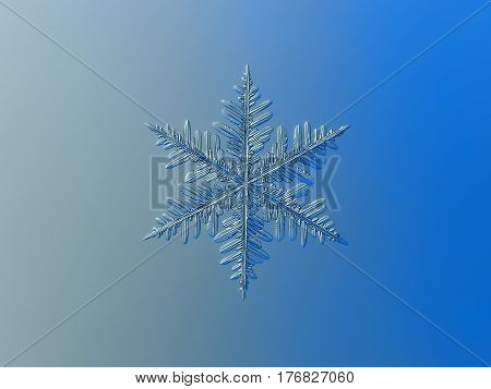 Macro photo of real snowflake: large snow crystal of fernlike dendrite type, with traditional-looking shape and complex structure of six ornate arms, with side branches and lots of thin icy