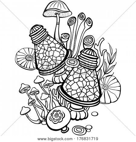 Coloring book page for adult with mushrooms. Raster version