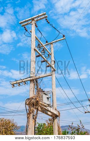 Electric Transformer on Concrete Tower with Dry Plants