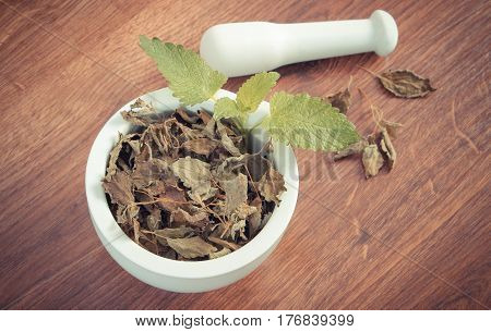 Vintage Photo, Fresh Green And Dried Lemon Balm With Mortar, Herbalism, Alternative Medicine