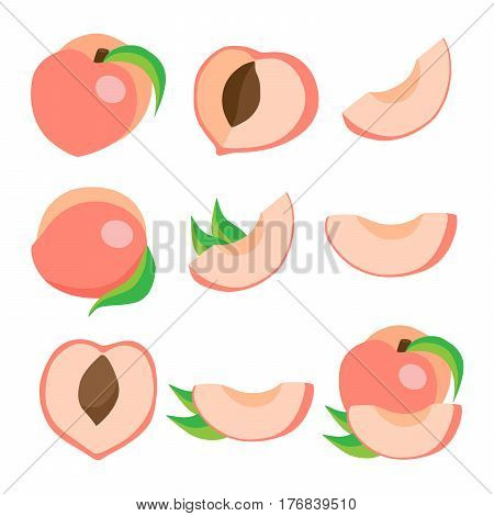 Vector set of peaches. Eco food vector illustration. Ripe peach peach slices of isolated on white background.