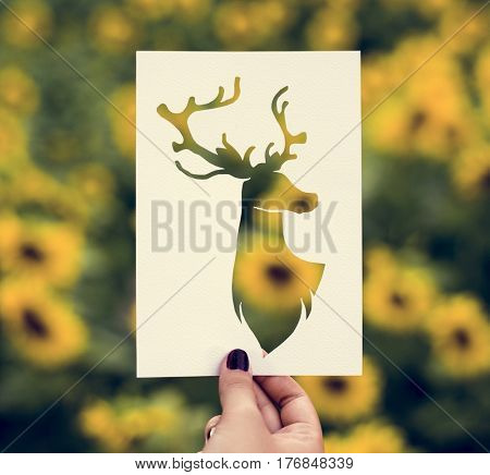 Hand Hold Deer with Antlers Paper Carving with Sunflower Background