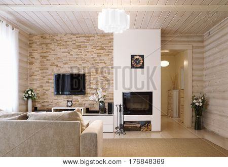 Interior shot of a modern living room with a fireplace