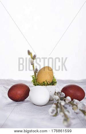Easter eggs with willow twigs. Happy Easter.