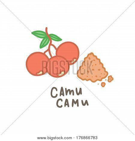 Camu camu powder superfood. Vector hand drawn illustration