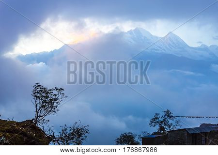Sunset Mountain View with Clouds around high Peaks and small Trees Silhouette on foreground in old style color tone