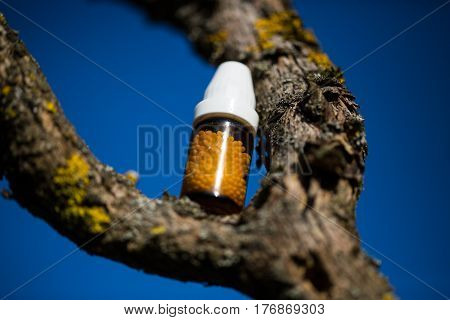 Globuli bottle on tree, hay fever, allergy
