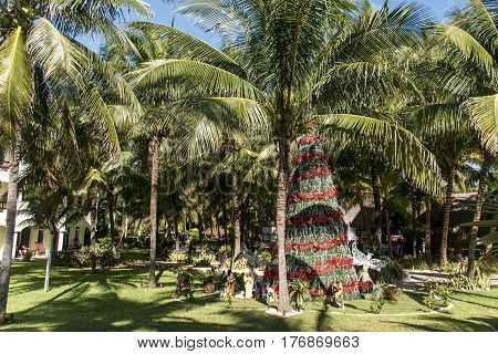 Public Christmas tree with red band between palms in the sun in cancun mexico in summer