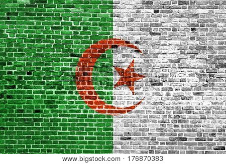 Flag of Algeria painted on brick wall, background texture