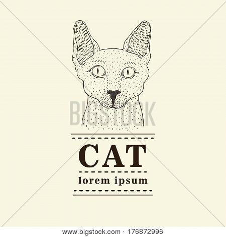 Sphynx cat logo, vector illustration, hand drawn