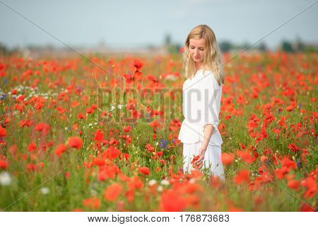 Woman wearing white dress plying with red flowers in blooming summer field