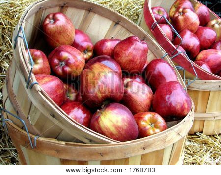 Bushels Of Apples At Market