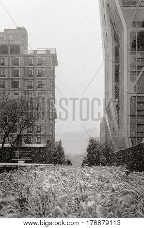 Black & White view of Highline in a snowstorm. Chelsea Manhattan New York City