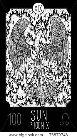 Sun. 19 Major Arcana Tarot Card. Phoenix. Fantasy engraved line art illustration. Engraved vector drawing. See all collection in my portfolio set