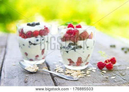 Layered Dessert With Fruits, Muesli And Cream Cheese In Glass Over Garden Background.