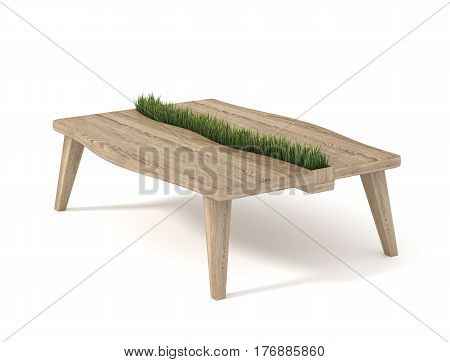 Wooden table with built-in pot with green grass isolated on white background. 3d rendering.