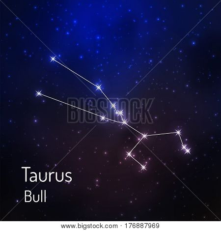 Taurus Bull constellation in the night starry sky. Vector illustration