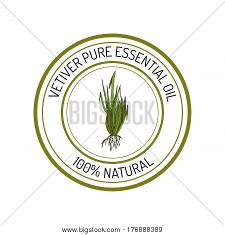 Vetiver, essential oil label, aromatic plant Vector illustration