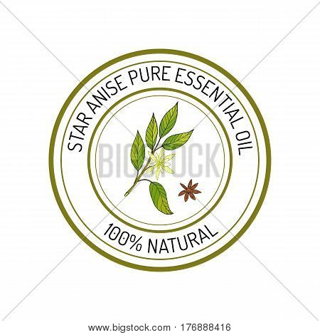 Star anise, essential oil label, aromatic plant. Vector illustration