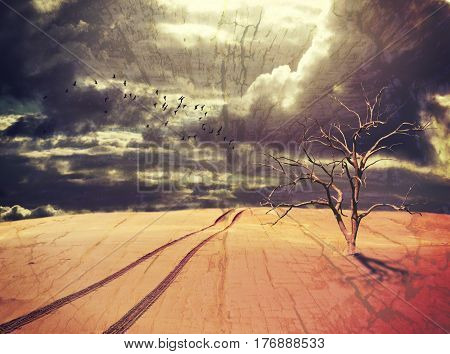 Surreal desert landscape with dead tree, vehicle tracks and flock of birds under a dramatic stormy sky. Drought and climate change concepts. Grunge, wood textured digital photo manipulation.