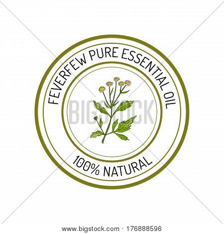 Feverfew, essential oil label, aromatic plant Vector illustration