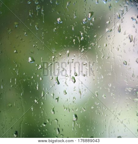 Blurry spring green background through glass with waterdrops