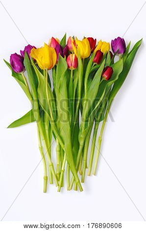 Bouquet of multicoloured tulips on white background.