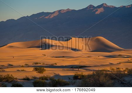 Mesquite Flat Sand Dunes in Death Valley National Park CA USA beautiful sunset when shadows are cast across the dunes.
