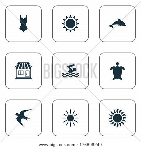 Vector Illustration Set Of Simple Seaside Icons. Elements Sunlight, Bikini, Swallow And Other Synonyms Holiday, Swallow And Seagull.