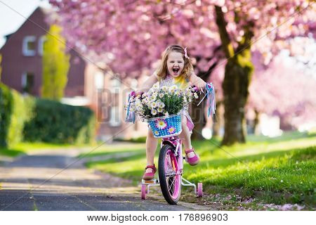 Little Girl Riding A Bike. Child On Bicycle.