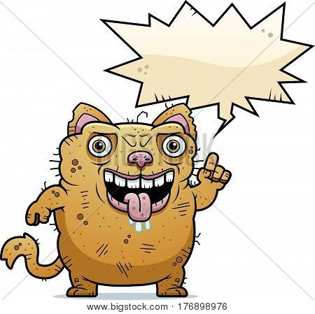 Ugly Cat Talking